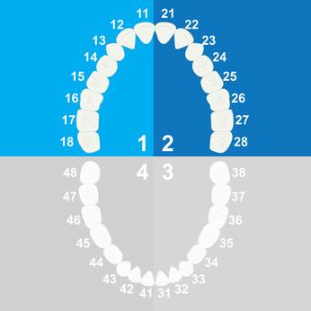 impianti dentali circolare superiore Torino Brandizzo
