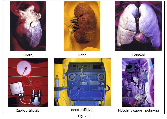 implantologia funzionale, dentista, dentiera, carie, impianti dentali, protesi fissa, protesi dentale, impianti a vite, ortodonzia, intarsi in ceramica, implantologia a carico immediato, all on six, all on four, protesi estetica
